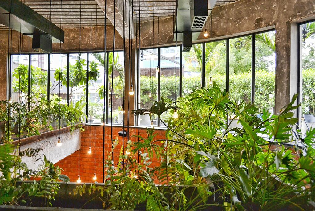 workplace-plants